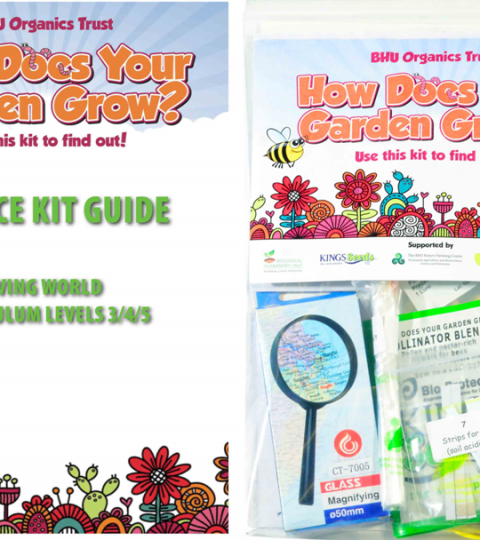 How Does Your Garden Grow -Science Guide For Teachers